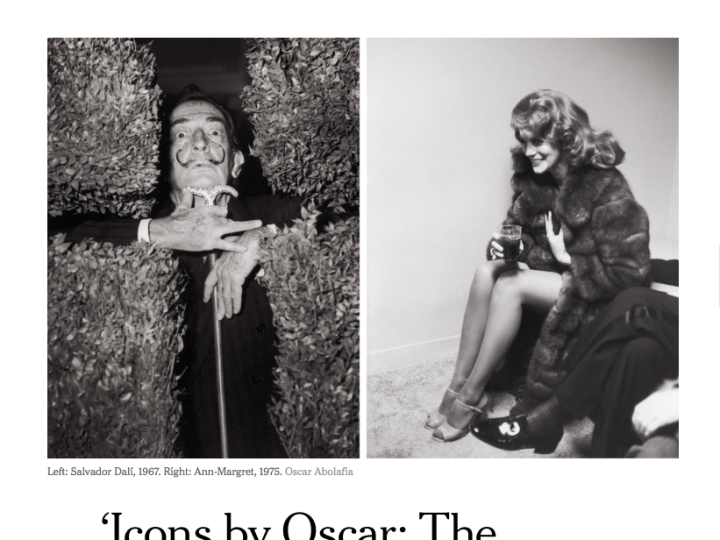 "New York Times; ""Five New Fashion Books Out This Spring. Several tomes…for your coffee table."""